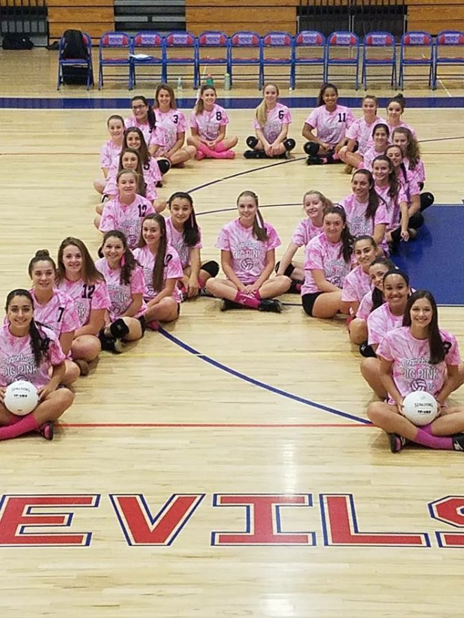 PRESS+RELEASE%3A+Girls+Volleyball+Dig+Pink+Night